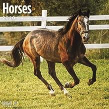 2020 Horses Calendar 16 Month 12 x 12 Wall Calendar by Bright Day Calendars (Farm Animals Wall Calendar)