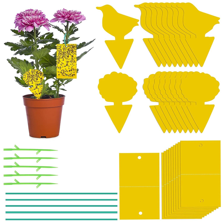 Paquete de 40 Trampas Insectos, Trampas de Control de Moscas, Trampas de Moscas, Trampas Adhesivas para Jardín, Frutales, Plantas (Amarillo-1)