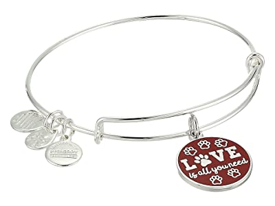 Alex and Ani Words Are Powerful Love Is All You Need Bangle (Shiny Silver) Bracelet