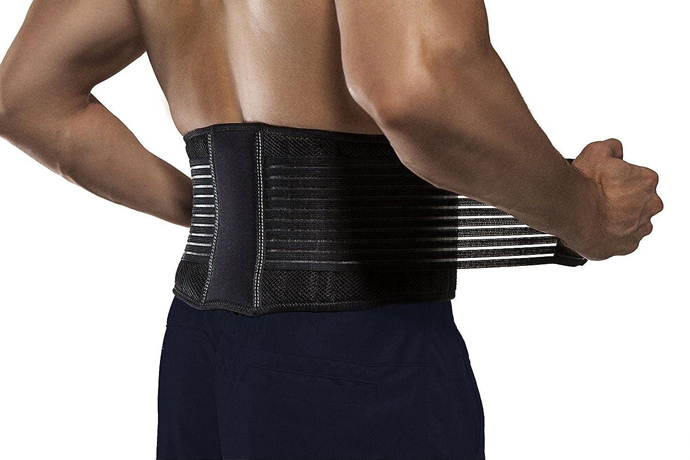 哲学的バックアップ菊腰痛ベルト 腰サポーター 骨盤ベルト 幅広タイプで固定力抜群 メッシュ素材 男女兼用 (L~XL:ウエスト約90~110cm)