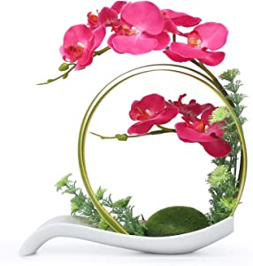 NNEE Artificial Phalaenopsis Orchid/Silk Flower Arrangement with Decorative Flower Pot - Red Orchild A323