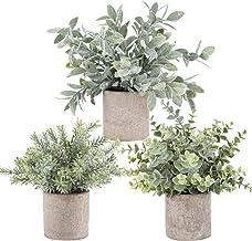 Der Rose 3 Pack Mini Potted Fake Plants Artificial Plastic Eucalyptus Plants for Home..