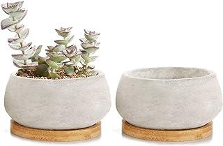 T4U Rachel's 9CM Serie de Cemento Suculento Cactus Macetas Jardineros de Macetas Contenedores Cajas de Ventana Gran Ronda con Bandeja de Bambú, Paquete de 2