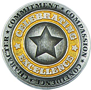Silver & Gold Celebrating Excellence Star Award Lapel Pin, 12 Pins