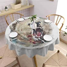 Bear Anti Wrinkle and Anti Wrinkle Polyester Watercolor Drawing Style Angry Looking Wild Animal Aggressive Vicious Growl Fangs for Weddings/banquets D55 Inch Round Tan Red Black