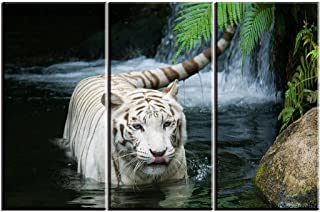 White Tiger Picture Decor for Bedroom, PIY Gorgeous Wall Art of Ivory Tigress in Pond, Wild Life Theme Canvas Painting Prints on Canvas (3 Piece, 1