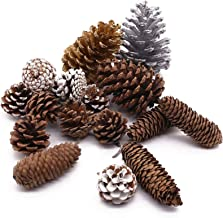 Johouse Natural Pine Cones, 17PCS Holiday Party Favor Home Decor Pine Cones for Crafts Home Decoration Christmas Ornaments...