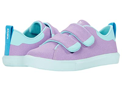 Native Kids Shoes Monaco CT Canvas (Little Kid) (Lavender Purple/Hydrangea Blue) Girl