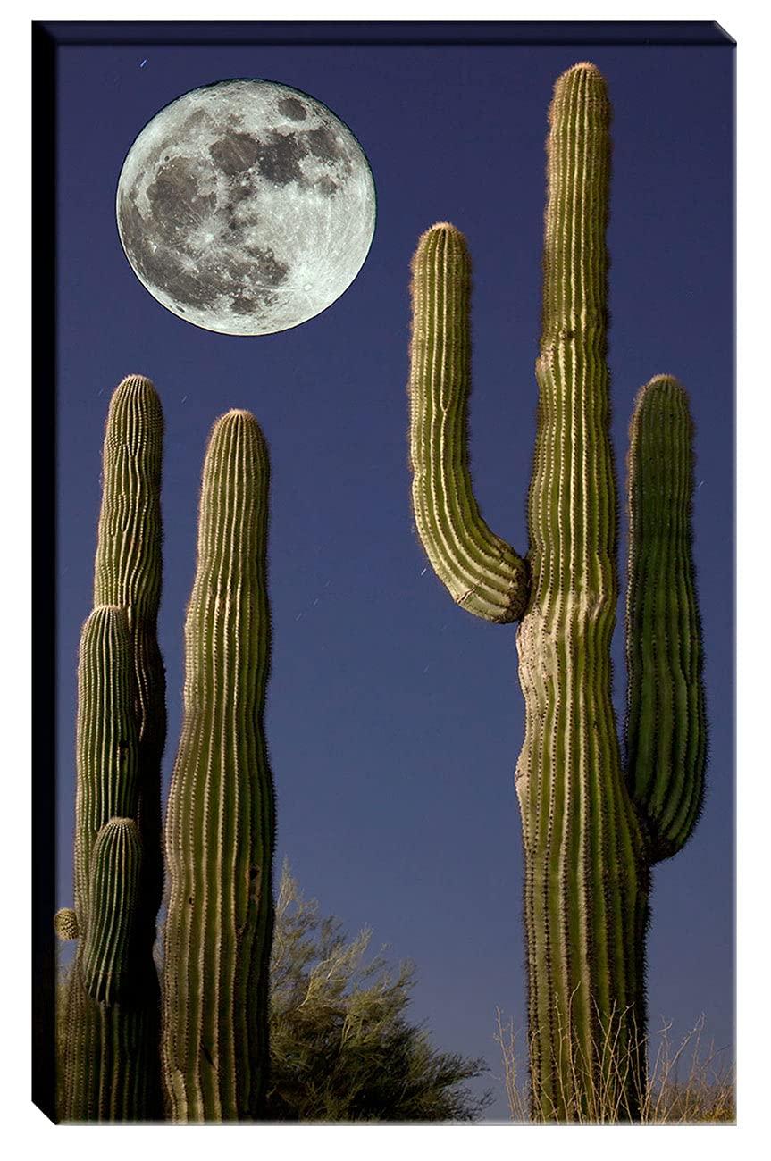 Wall Sale item Art Decor Canvas Super intense SALE Photograph of Full Moon Large Saguaro over