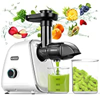 Wowdsgn Slow Masticating Juicer Machines Deals