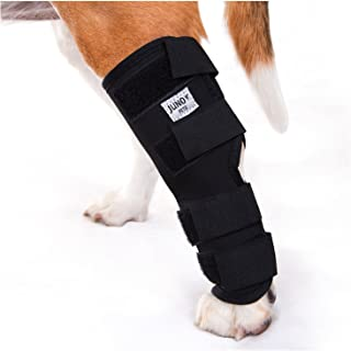 JunoPets Dog Canine Rear Leg Knee Brace, Hock Joint Wrap for Heals and Prevents Injuries and Sprains Helps with Loss of Stability (Medium)