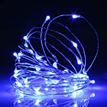 Ehome 100 LED 33ft/10m Starry Fairy String Light, Waterproof Decorative Copper Wire Lights for Indoor, Bedroom Festival Christmas Wedding Party Patio Window with USB Interface (Blue)