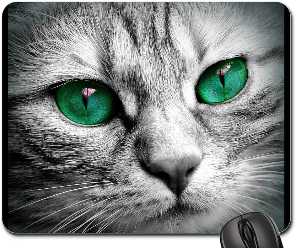 Mouse Pad - Cat Face Eyes Close Popular products Pet Japan's largest assortment Kitten Tiger