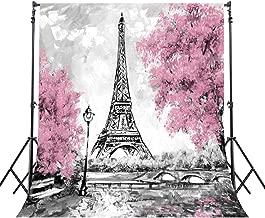 Riyidecor Eiffel Tower Backdrop Gray Paris Photography Background Pink Black and White 5Wx7H Feet Decoration Celebration Props Party Photo Shoot Backdrop Blush Vinyl Cloth