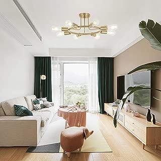Best reclaimed ceiling lights Reviews