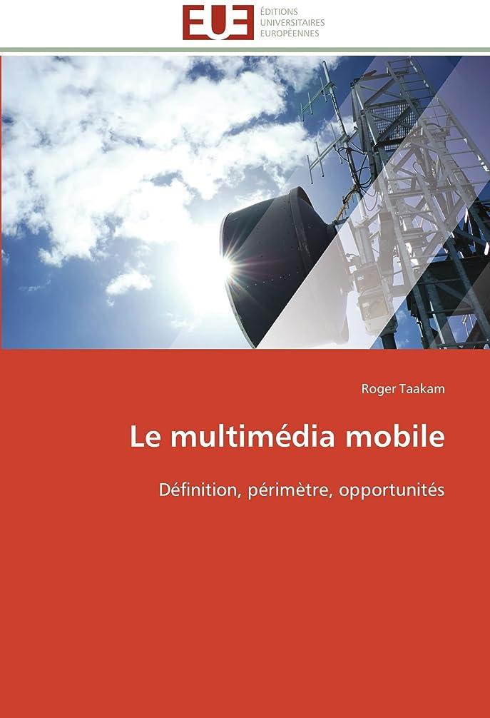 不安定ムス疑問を超えてLe Multimédia Mobile (Omn.Univ.Europ.)