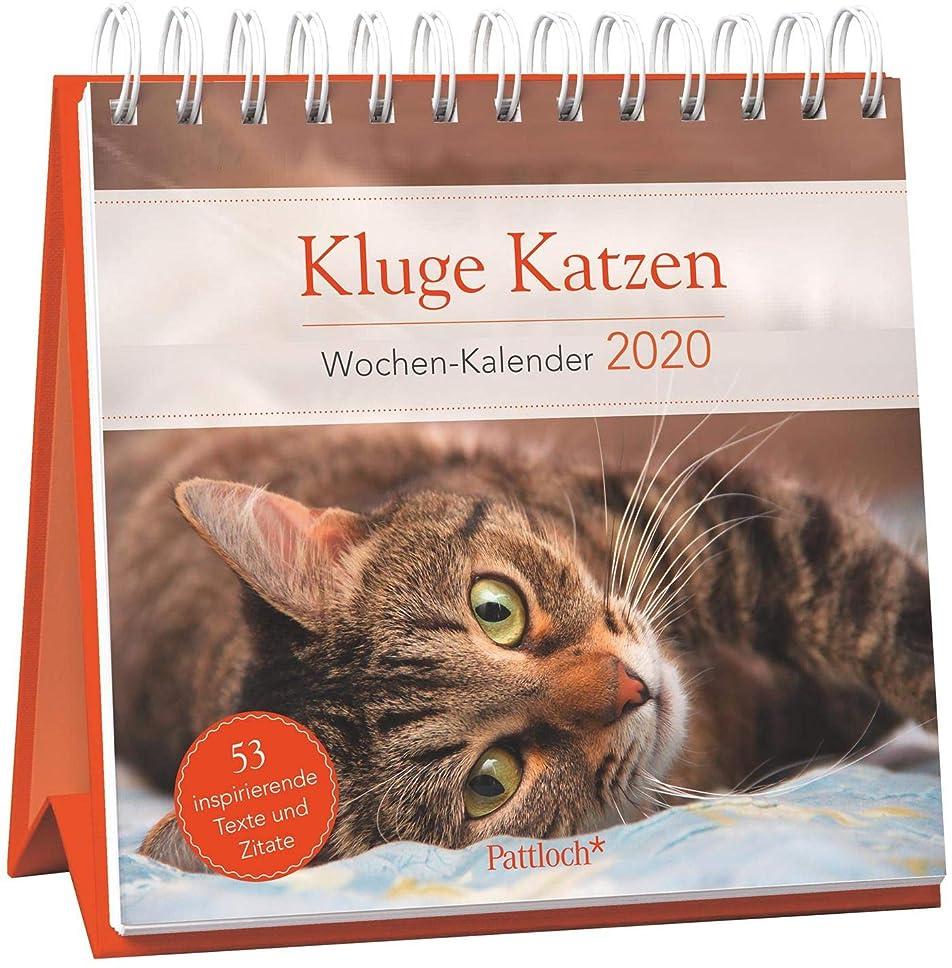 うまアラスカ輸血Kluge Katzen - Wochen-Kalender 2020: zum Aufstellen mit Fotos und Zitaten, inspirierende Texte auf den Rueckseiten