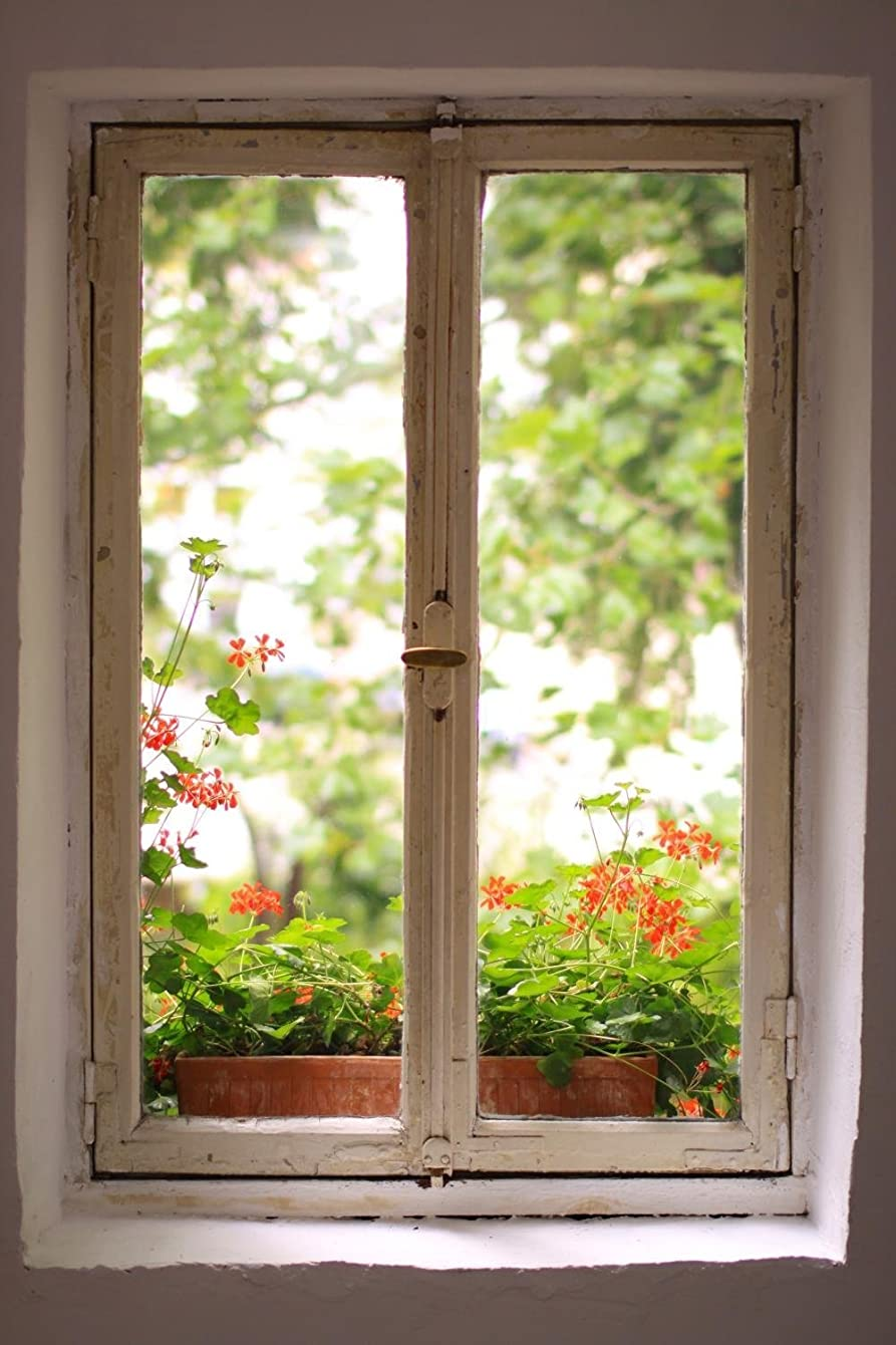 Wallmonkeys WM199818 Window to The Garden Peel and Stick Wall Decals (30 in H x 20 in W), Medium-Large
