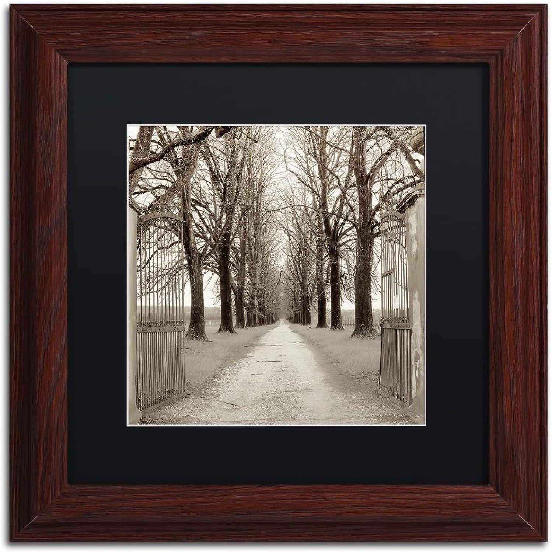 Trademark Fine Art Veneto Giardini I by Alan bluestein, Black Matte, Wood Frame, 11  X 11