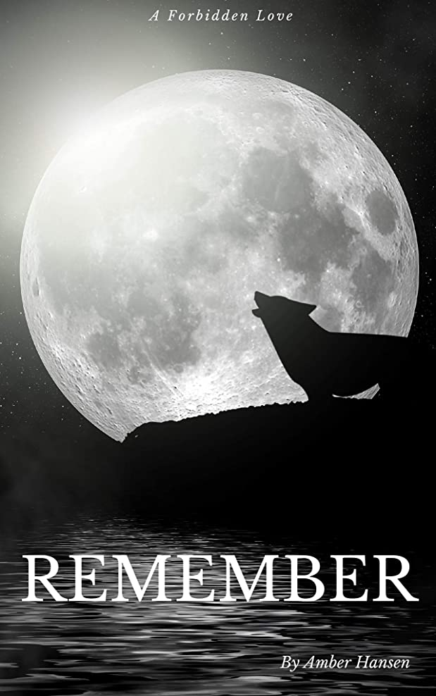ラバ鋼乳剤Remember (English Edition)