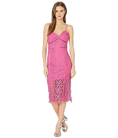 Bardot Roxy Lace Dress (Pink Pop) Women