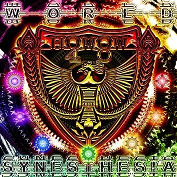 world synesthesia
