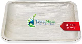 Terra Mirai Palm leaf Plates - Pack of 20 Square Plates of Size 8 Inch - Ecofriendly Disposable Dinnerware - Biodegradable and Premium Quality Square Plates - Ideal for Party, BBQ, Camping and More