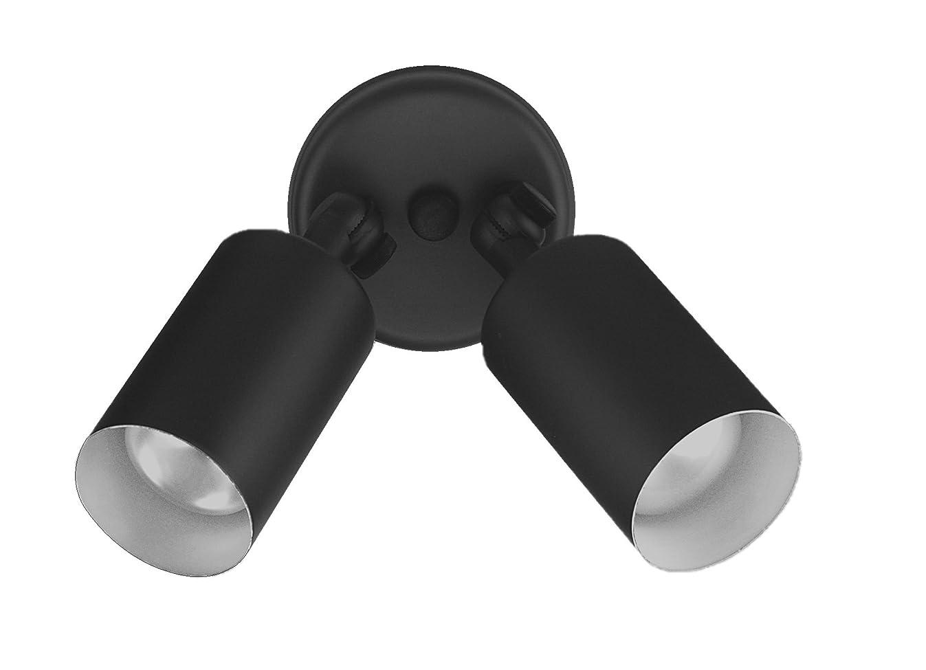 NICOR Lighting 75-Watt Double Bullet Adjustable Flood Light, Black (11721)