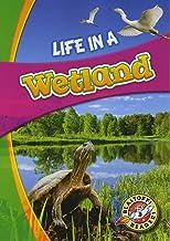 Life in a Wetland (Blastoff! Readers: Biomes Alive!)