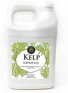 Liquid Fertilizer Kelp - Age Old - 1 Gallon