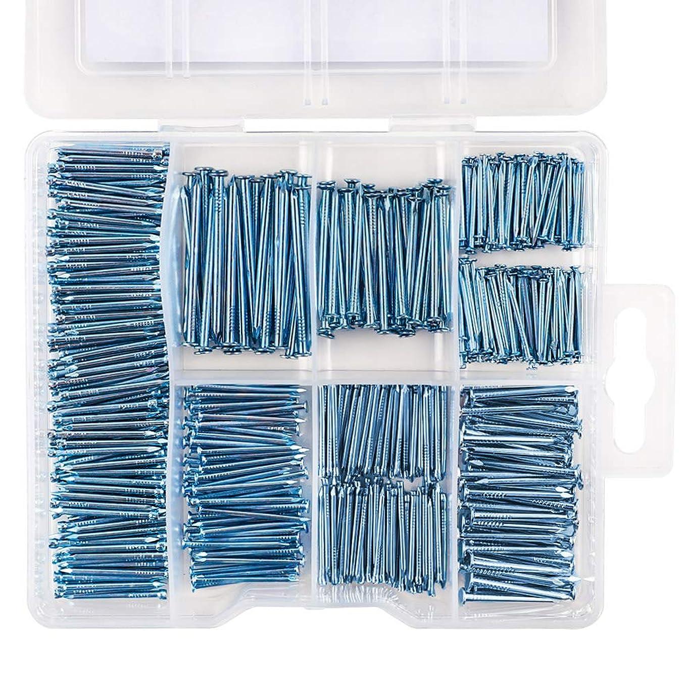 Coceca Hardware Nail Assortment Kit, Galvanized Nails, 7 Size Assortment (600 pcs)