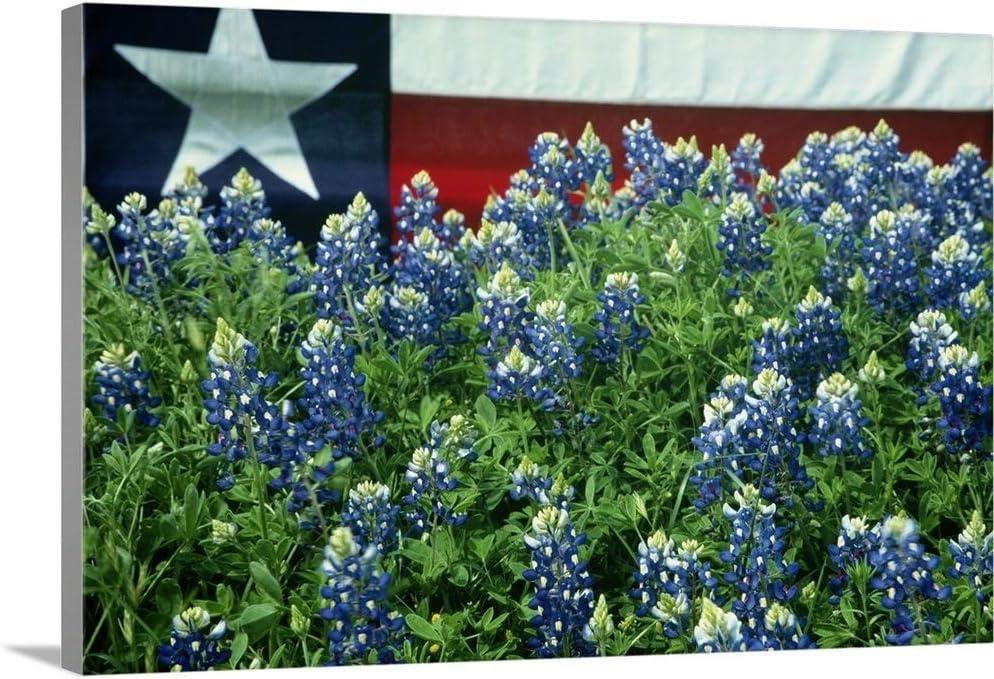 Bluebonnets Texas State Flag Washington Mall Free Shipping Cheap Bargain Gift in Wall Art Print Canvas Artwork
