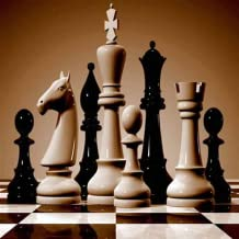About Chess Rules
