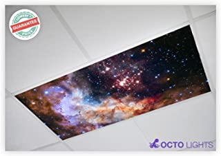 Astronomy 018 2x4 Flexible Fluorescent Light Cover