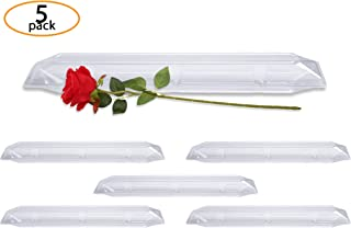 single white rose in a box