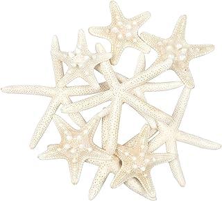 Jangostor 10 PCS Starfish 2-6 Inch Mixed Ocean Beach Starfish-Natural Colorful Seashells Starfish Perfect for Wedding Deco...