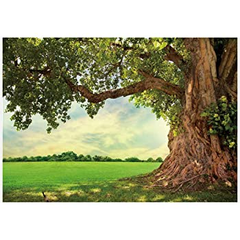 Amazon Com Yeele 8x6ft Spring Backdrop For Photography Spring Park Meadow Old Tree Background Outdoor Picnic Nature Scenery Kids Adult Photo Booth Shoot Vinyl Studio Props Camera Photo