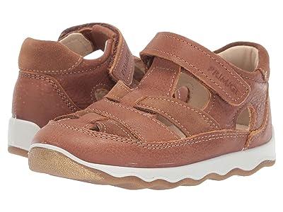 Primigi Kids PTN 33710 (Infant/Toddler) (Brown) Boy