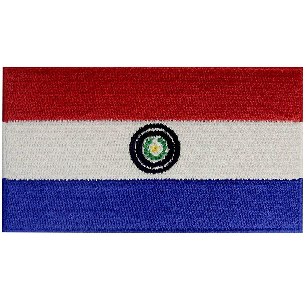 Paraguay Flag Embroidered Patch Paraguayan Iron On Sew On National Emblem