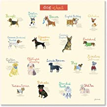 Oopsy Daisy Dog Chart by Jill McDonald Canvas Wall Art, 24 by 24-Inch