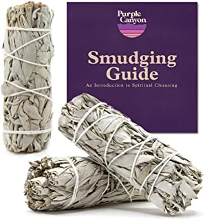 PURPLE CANYON White Sage Bundles - (3 Pack) - Sage Smudge Stick for Home Cleansing Incense Healing Meditation and Californ...