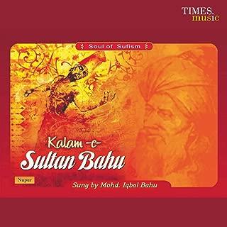 Best kalam sultan bahu Reviews