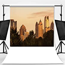 Midtown Skyline from Piedmont Park in Atlanta Theme Backdrop Backdrop Background for Photography,091046,8.2x8.2ft