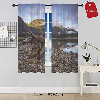 Landscape of a Mountain Lake and Cloudy Sky Driftwood on Rocky Shore Rod Pocket Sheer Voile Window Curtain Panels for Kids Room,Kitchen,Living Room & Bedroom,2 Panels,Each 52x54 Inch,Blue and Brown