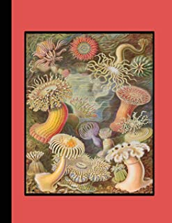 Vintage botanical illustration Journal: Actiniae   - The large botanical journal for the marine life, sea anemones and sea...