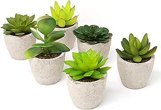 Maison & White Conjunto de 6 plantas artificiales suculentas | Pequeños cactus falsos falsos con macetas grises | Ideal para el hogar, oficina y decoración al aire libre