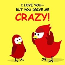 you drive me crazy book