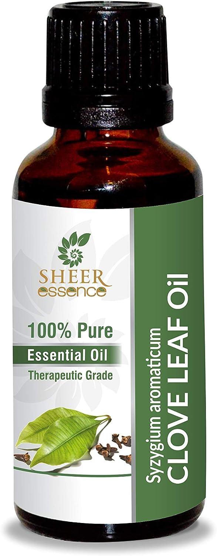 Clove Leaf Oil 100% Pure Natural Financial sales sale Therapeutic Undiluted Fashion Uncut Gra