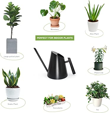 Cesun Watering Can Indoor Plants - Small Stainless Water Can with Long Straight Spout, Metal Watering Pot for House Bonsai &a