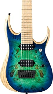 Best ibanez rgd 7 string Reviews